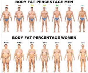 calculate my body fat ratio